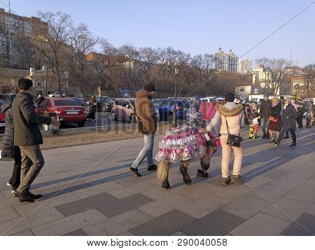 Vladivostok, Primorsky Krai-march 17, 2019: Urban Landscape With People And Animals On The Embankmen