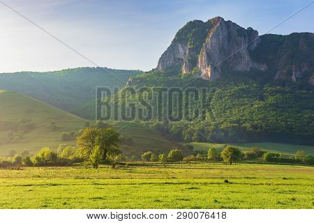 Springtime Countryside Of Romania At Sunrise. Beautiful Scenery With Trees On A Grassy Meadow. Huge