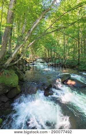 Cascades On The Forest Creek In Springtime. Beautiful Nature Scenery. River Path Come From The Dista