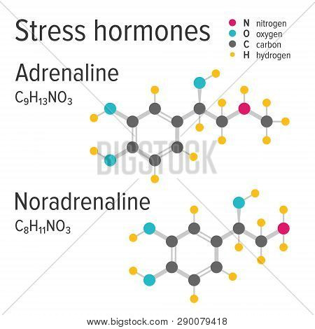 Adrenaline And Noradrenaline Stress Harmones Vector Chemical Formulas