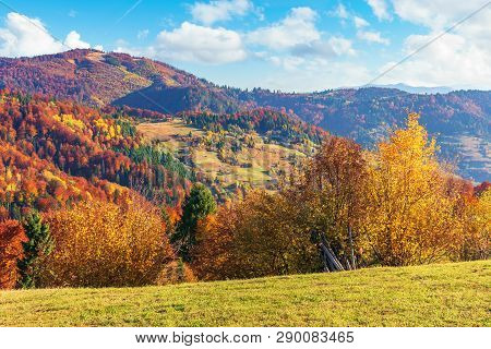 Autumn Countryside In Mountains. Alpine Meadows And Forested Rolling Hills. Beautiful Carpathian Lan