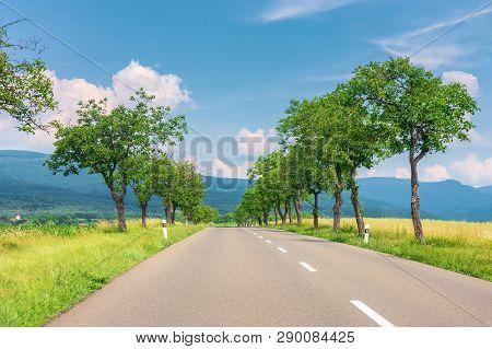 Countryside Road In To The Mountains. Trees And Rural Fields On Both Sides Along The Straight Way. W