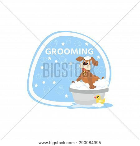 Dog Grooming Concept.  Cartoon Cute Dog Character  A Soapy Bath With Rubber Duck. Pet Wash Icon, Log