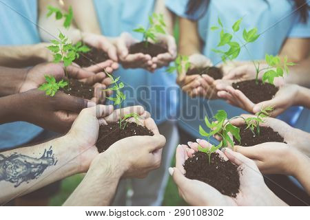 Saving Nature On Earth. Group Of Environmentalists Holding Young Trees, Growing New Park Or Forest,