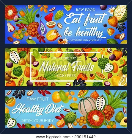 Tropical Fruits Detox Nutrition, Gmo Free Food. Vector Soursop And Marindo, Caimito And Marang, Litc