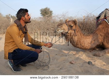 Bikaner, India - January 12, 2019: Rajasthani Man With Camel Waiting For Tourist In Tahr Desert. Tou