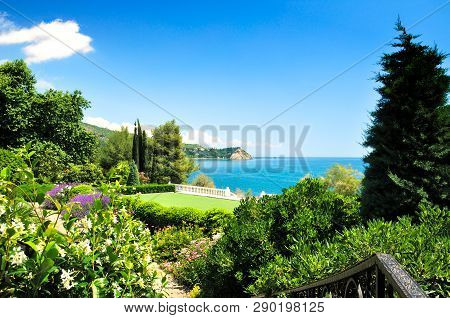Park Aivazovsky Botanical Garden In The Village Partenit.summer In The Crimea .on The Black Sea
