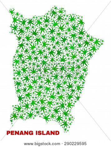 Vector Marijuana Penang Island Map Collage. Concept With Green Weed Leaves For Marijuana Legalize Ca