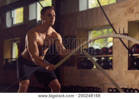 Fit, Sporty And Athletic Sportsman Working In A Gym. Man Training Using Battle Ropes. Sports, Athlet