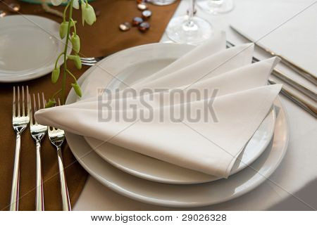 Luxurious wedding dinner