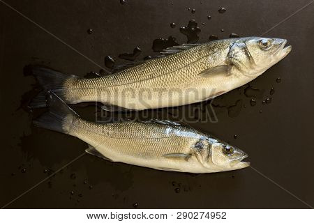 Fresh Fish On A Black Stone Table. Concept- Healthy Food, Fresh Seafood. Dicentrarchus Labrax.