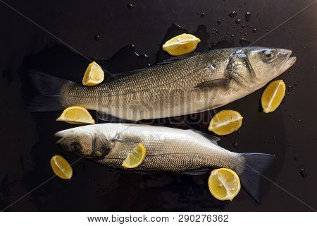 Fresh Raw Fish Prepared For Baking. Slices Of Juicy Lemon.  Dicentrarchus Labrax. Concept- Healthy F