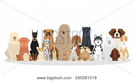 Dog Set. Collection Of Dogs Of Various Breed