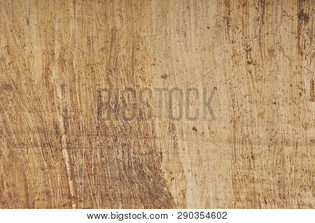 Egyptian Papyrus With Space For Textured Background