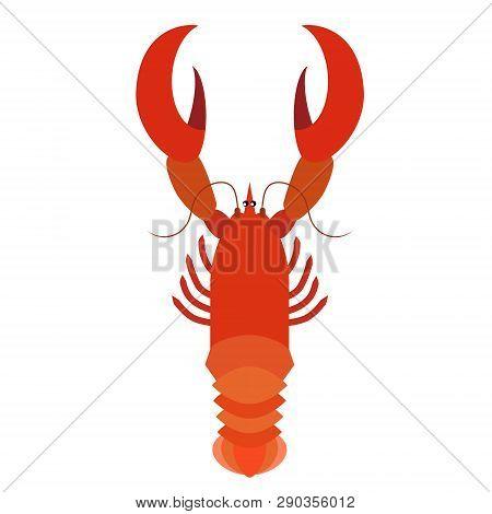 Crawfish Flat Illustration Marine Creatures And Underwater World Series