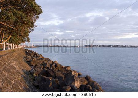 Auckland Forshore