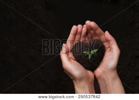 Hands holding soil in the shape of a heart.Earth day concept.