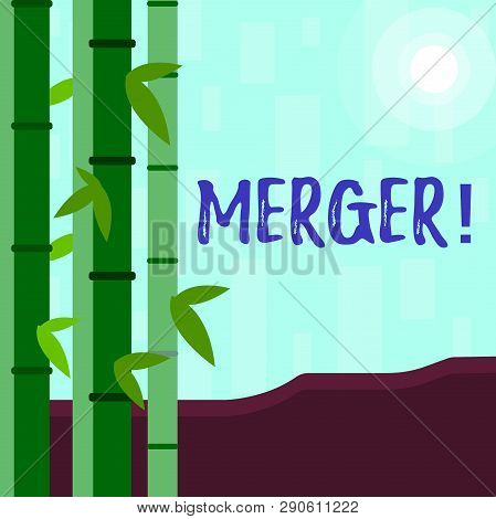 Writing note showing Merger. Business photo showcasing Combination of two things or companies Fusion Coalition Unification Colorful Set of Leafy Bamboo and Moon or Sun with Round Beam. poster