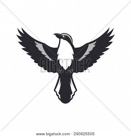 Bird Silhouette. Shrike Bird With Spread Wings.