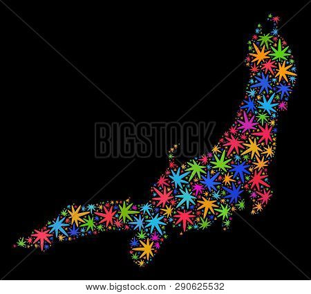Bright Vector Marijuana Honshu Island Map Collage On A Black Background. Template With Colored Herba