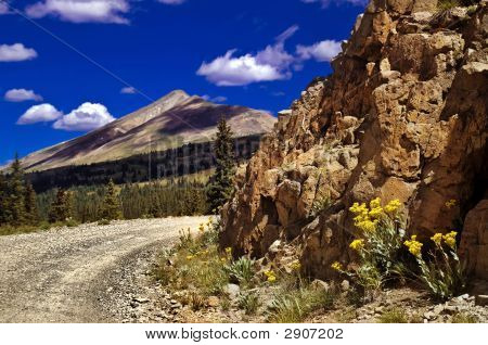 Colorado Mountain Pass Road And Wildflowers