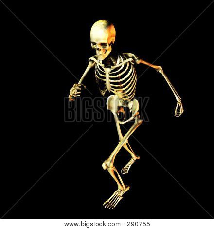 Bone 4 Copy