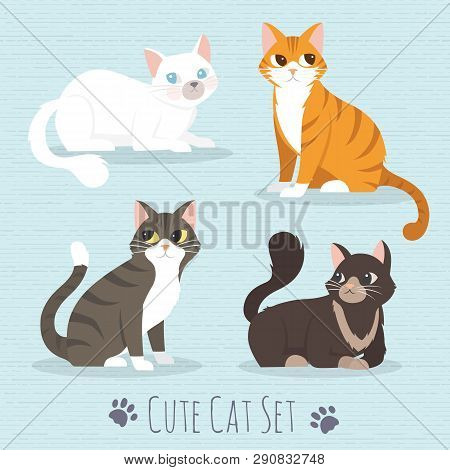 poster of Cat Set, with whitet, grey, orange, brown cats flat icons. Vector Illustration Cartoon