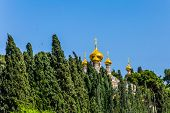 Golden domes Church of St. Mary Magdalen in Gethsemane. Russian Orthodox Church in East Jerusalem. Cypress Alley. The concept of historical, religious and ethnographic tourism poster