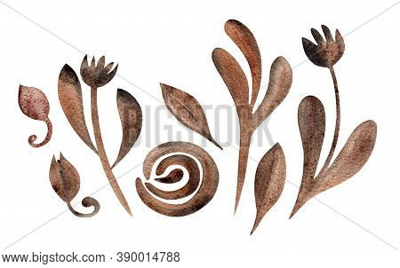 Set With Dry Autumn Flowers, Leaves, Buds Isolated On White. Boho Watercolor In Trendy Earthy Dark G