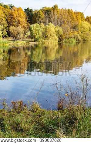 Colorful Coasts Of Pond In City Park On Sunny Autumn Day