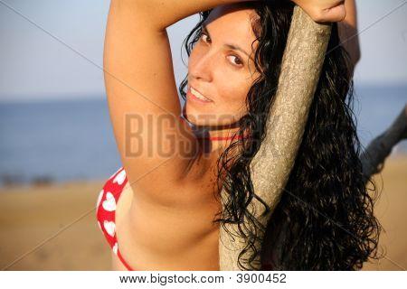 Bikini Girl Lying On Tree At Beach