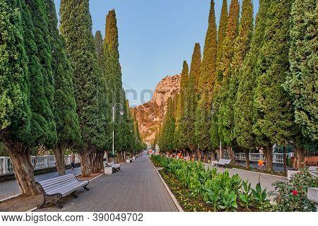Cypress Alley In Town Simeiz, Big Yalta, South Coast Of Crimea. Apollo Alley, Lenin Avenue.