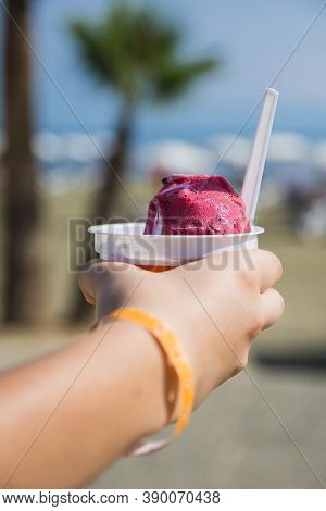 A Young Tourist Girl Holds In Her Hand A Plastic Cup Of Strawberry Or Raspberry Ice Cream Sorbet Aga