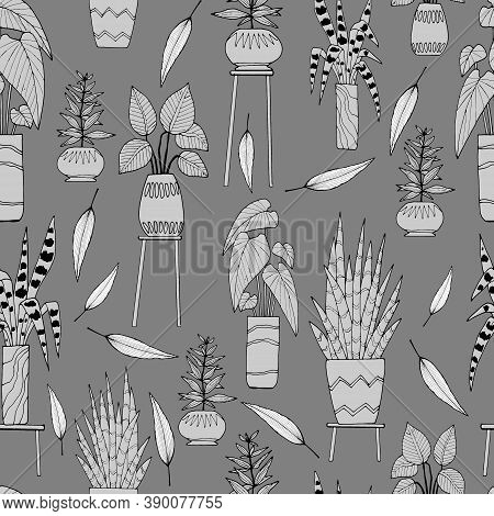 Seamless Pattern In Monochrome, With The Image Of Houseplants, Rnament For Wallpaper And Fabric, Wra