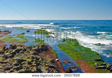 San Diego California Coast Line, La Jolla Shores in San Diego, California USA