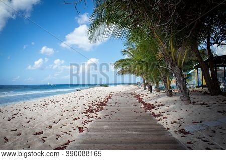 Beautiful Scenic Barbados Island Boardwalk With Palm Trees On Beach