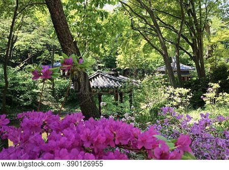 Seoul, South Korea - May 2, 2017: Pavilions At The Huwon Park (secret Garden) Among Flowering Bushes