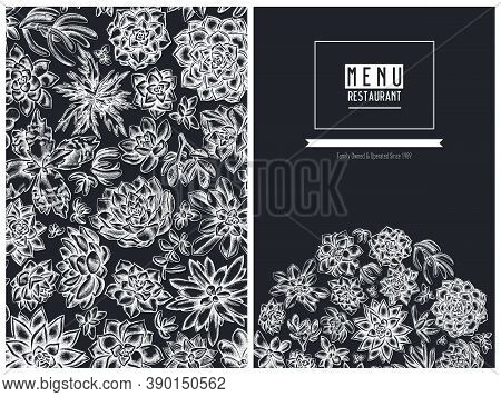 Menu Cover Floral Design With Chalk Succulent Echeveria, Succulent Echeveria, Succulent Stock Illust