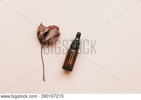 A Bottle Of Anti-aging Serum Next To An Autumn Leaf On A Pink Background. Anti Aging Concept.