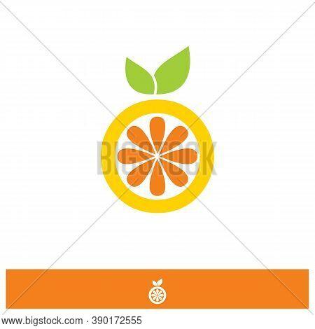 Spiral Design Logo. Round Logo Design. Creative Logo. Web Logo. Colorful Logo. Vector Abstract Circl