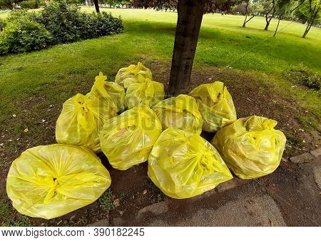 Bucharest, Romania - June 22, 2020: Garbage Bags Laid Next To A Tree In A Park In Downtown Bucharest