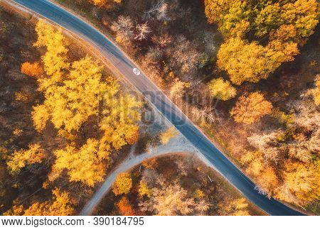 Aerial View Of Road In Beautiful Autumn Forest At Sunset. Colorful Landscape With Empty Road From Ab