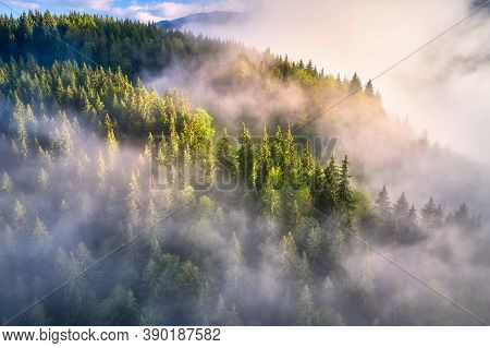 Mountains In Clouds At Sunrise In Summer. Aerial View Of Mountain Slopes With Green Trees In Fog. Be