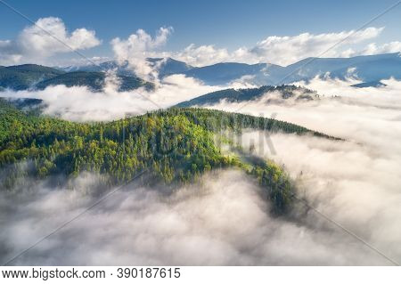 Mountains In Clouds At Sunrise In Summer. Aerial View Of Mountain Peak With Green Trees In Fog. Beau