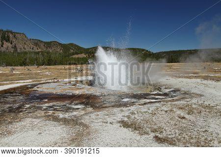 Jewel Geyser Erupting Along Biscuit Basin Loop Trail (continental Divide Trail) In Biscuit Basin At