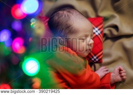 Cute Newborn Baby. Sleeping Baby Under The Fir-tree. Closeup Portrait Of Newborn Baby. Baby Goods Pa