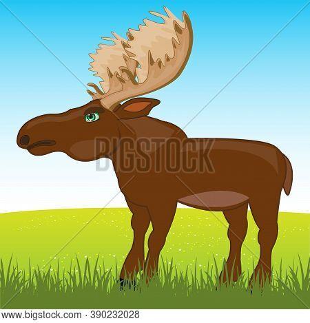 Wild Ungulate Animal Moose On Year Glade