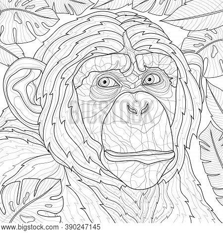 Chimpanzee Tropical Leaves. Animal.coloring Book Antistress For Children And Adults. Zen-tangle Styl