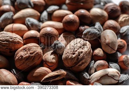 Assorted Nuts. Different Types Of Macadamia Nuts, Walnuts And Hazelnuts Lie In An Even Layer. Backgr
