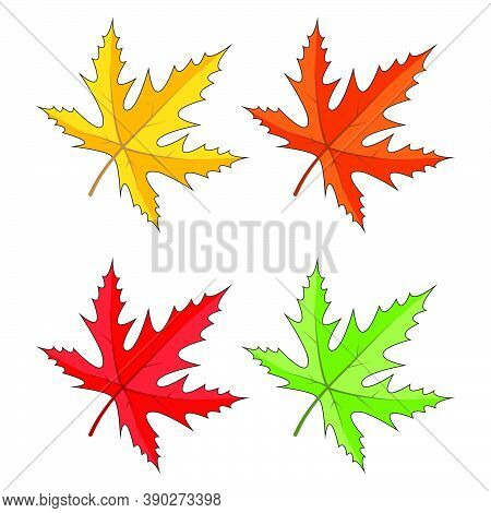 Maple Leaves Icon Set Isolated On White. Seasonal Clipart In Vivid Colors. Yellow, Orange, Red, Gree